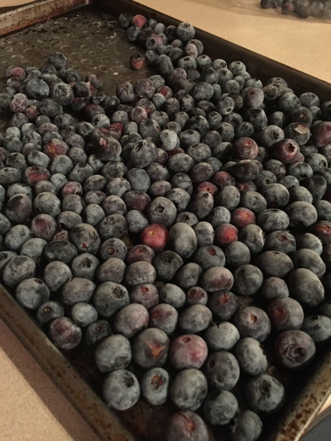 Blueberries after being frozen.