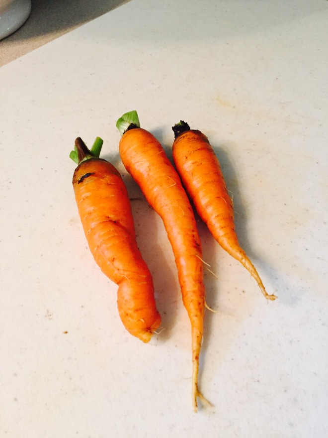We had a few legit carrots.